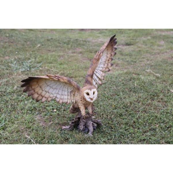 Barn Owl On Stump Wwings Open 1752 H Inseason Homegarden